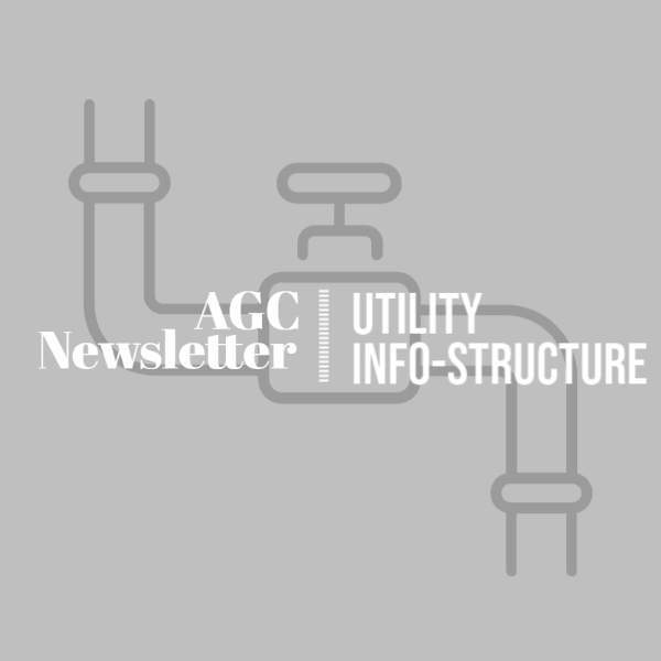 Utility INFO-Structure